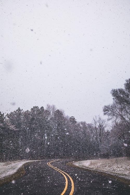 Gratis lagerfoto af forkølelse, miljø, motorvej, natur
