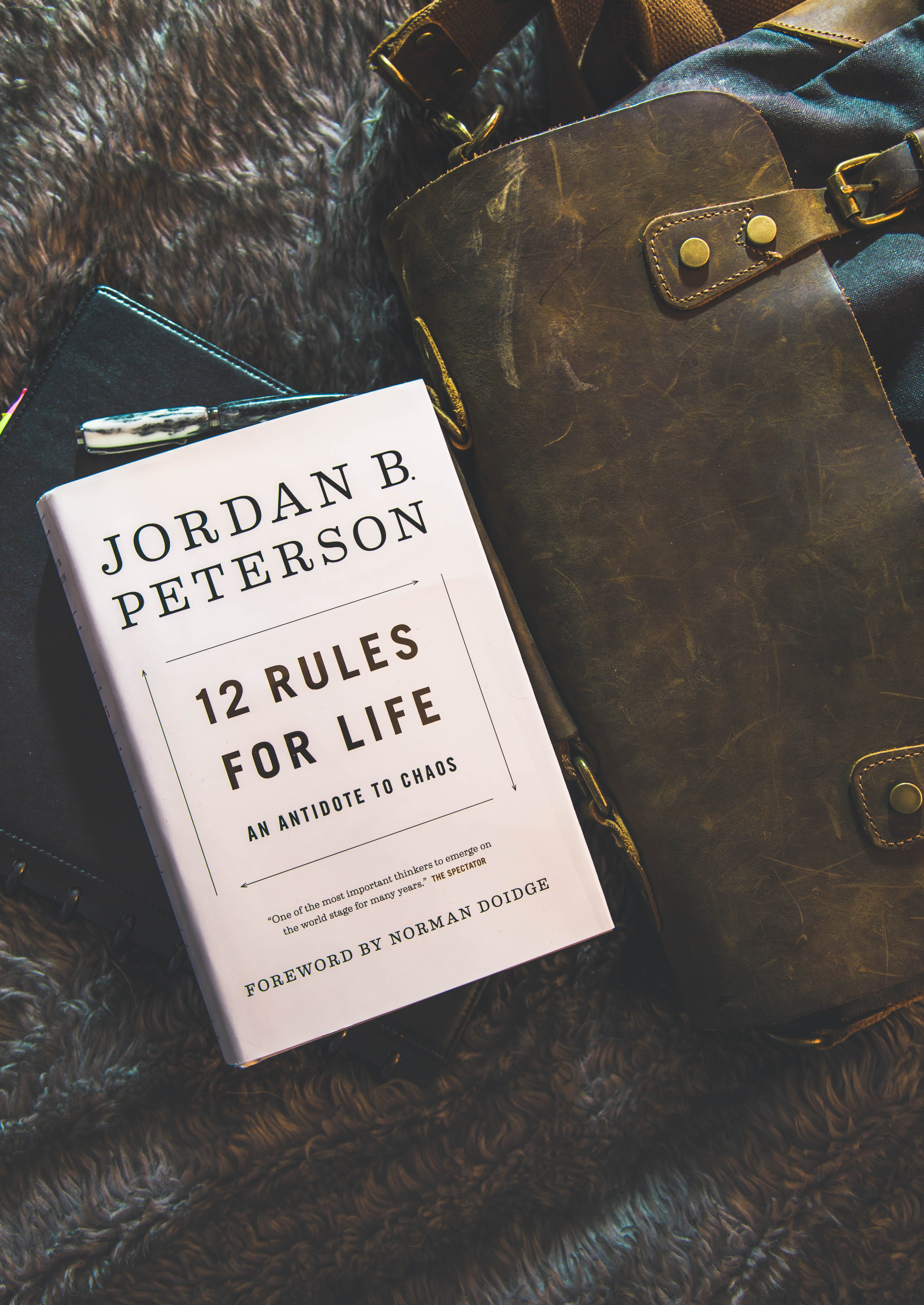 12 Rules for Life by Jordan B. Peterson Book Brown Textile