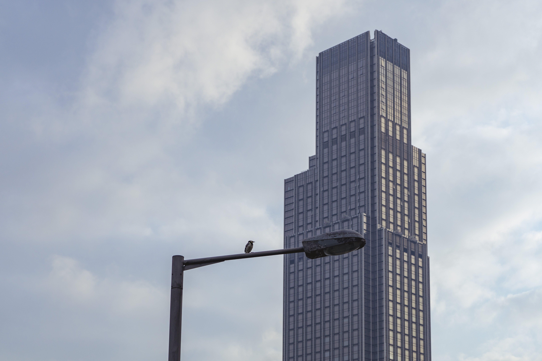 Gray Painted Skyscraper
