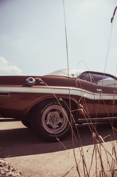 Black Muscle Car Near Brown Grass during Daytime