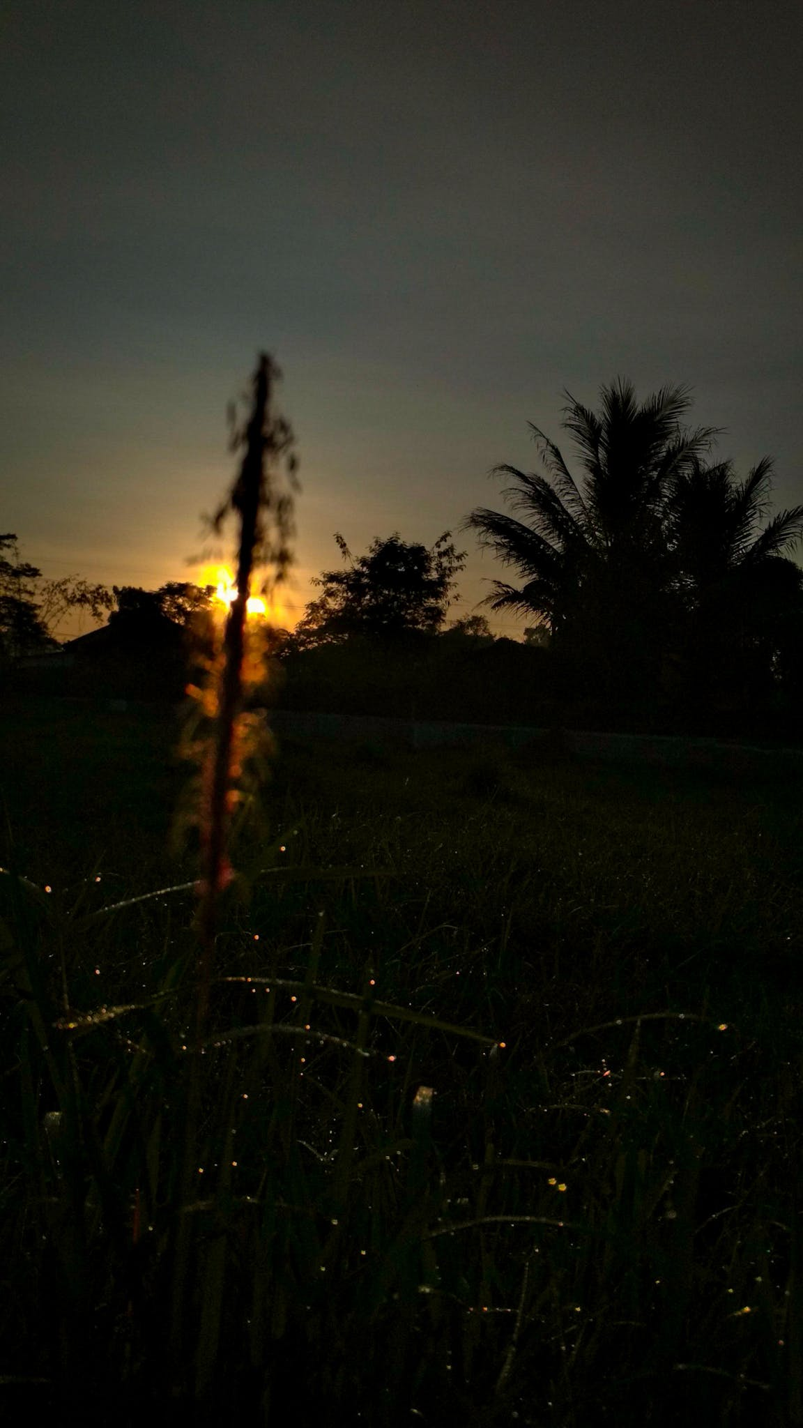 Free stock photo of black, blur, east java, eleven photography