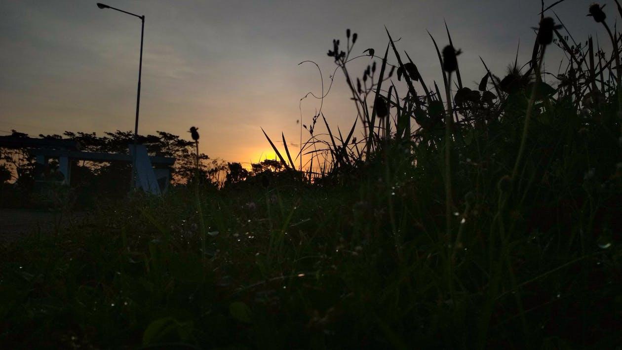 восточная ява, восход, закат