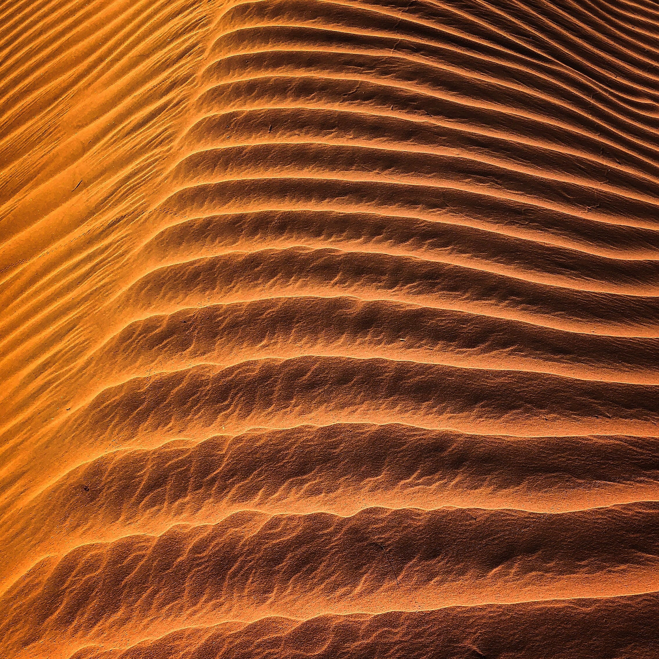 Základová fotografie zdarma na téma barvy, duny, horko, jasný
