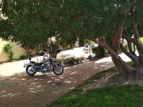 Free stock photo of motorbike, vintage bicycle