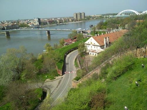 Free stock photo of bridge, city, Serbia