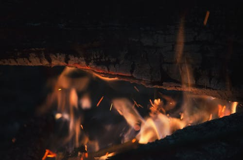 Fotos de stock gratuitas de calor, firelog, fuego, hoguera