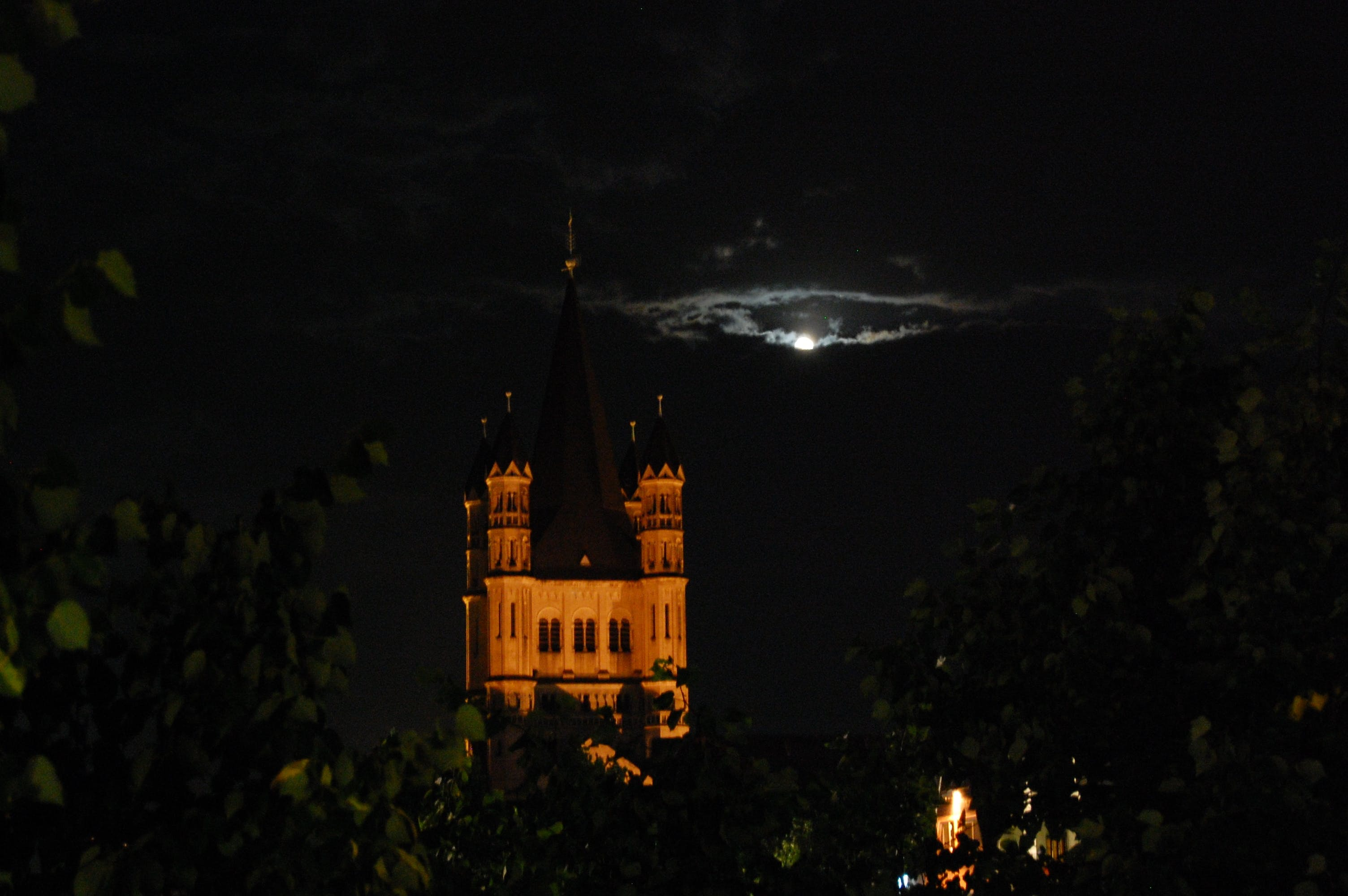 Free stock photo of cologne, dracula, night time