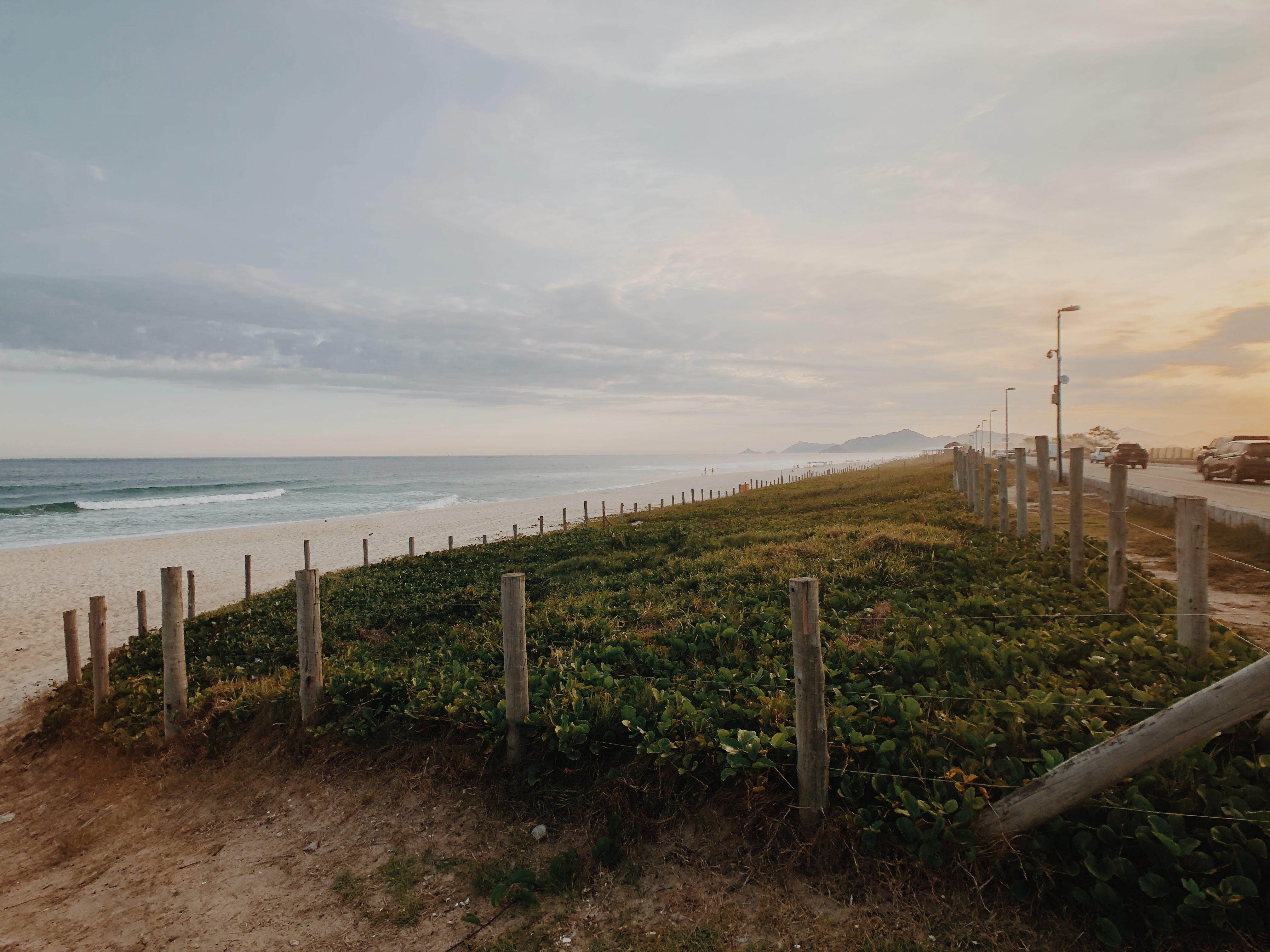 Photography of Grass Field Near Ocean