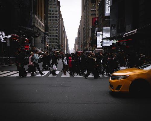 交通, 人群, 城市, 組成一組 的 免费素材照片