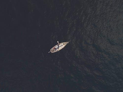 교통체계, 돛단배, 물, 바다의 무료 스톡 사진
