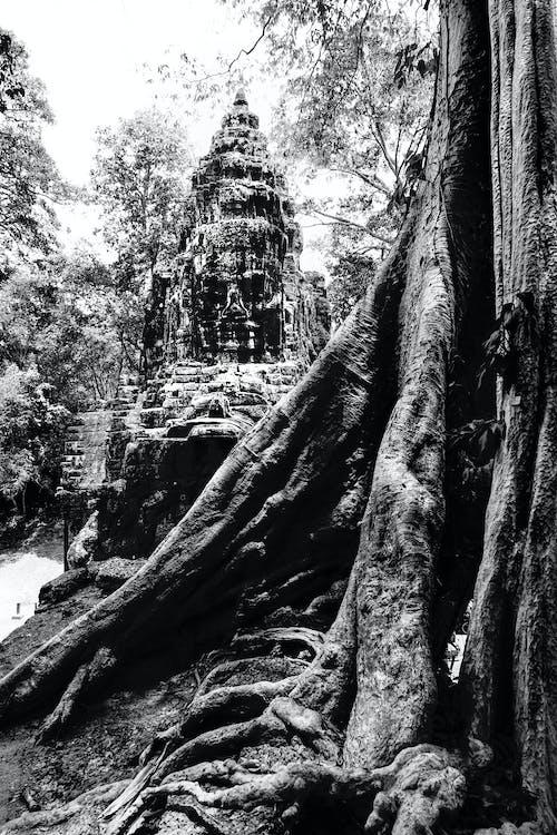 Immagine gratuita di vecchi templi