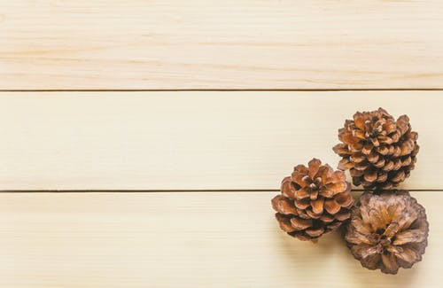 Free stock photo of backdrop, background, beautiful, brown