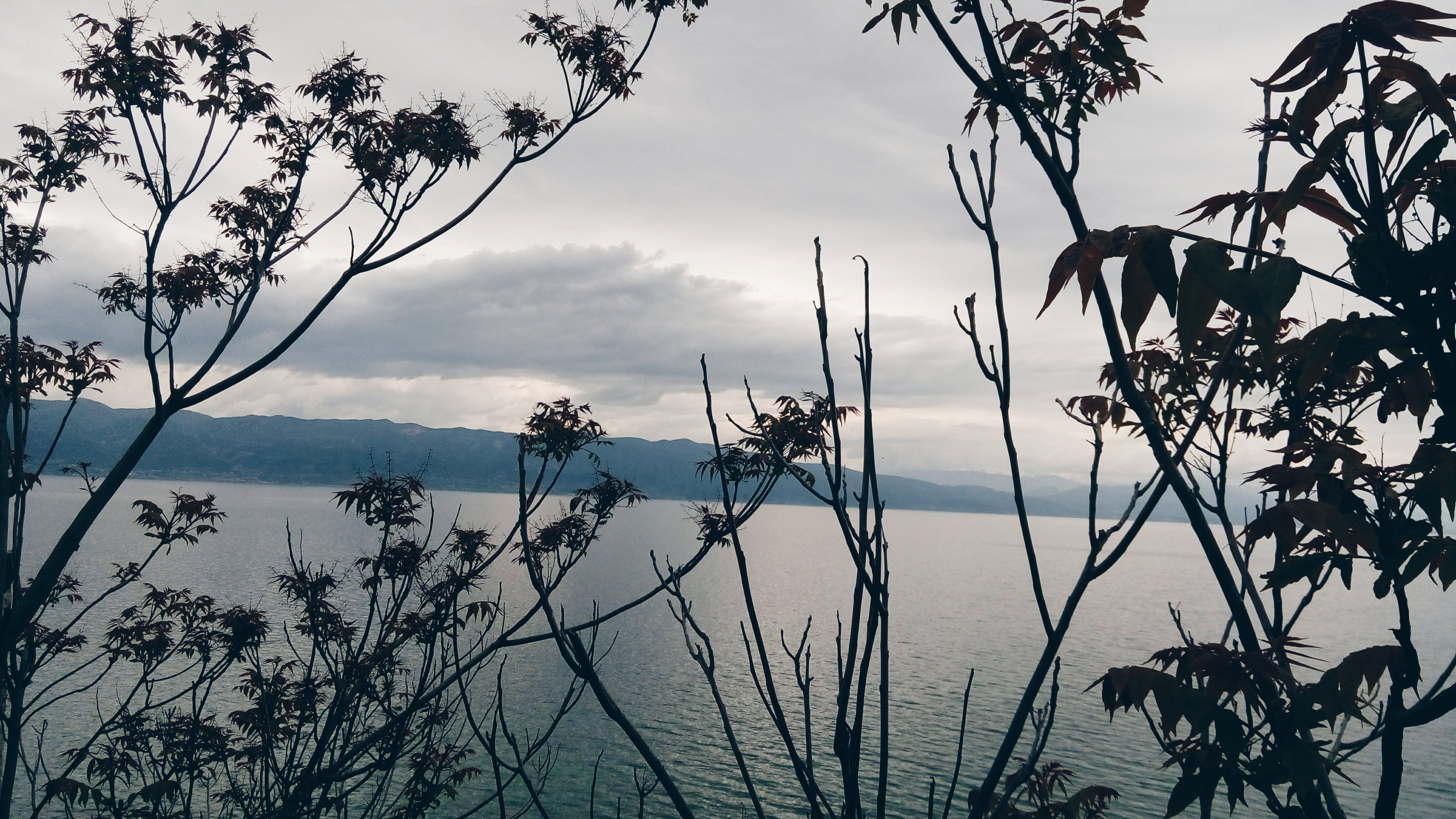 Free stock photo of #lake #peaceful #weather