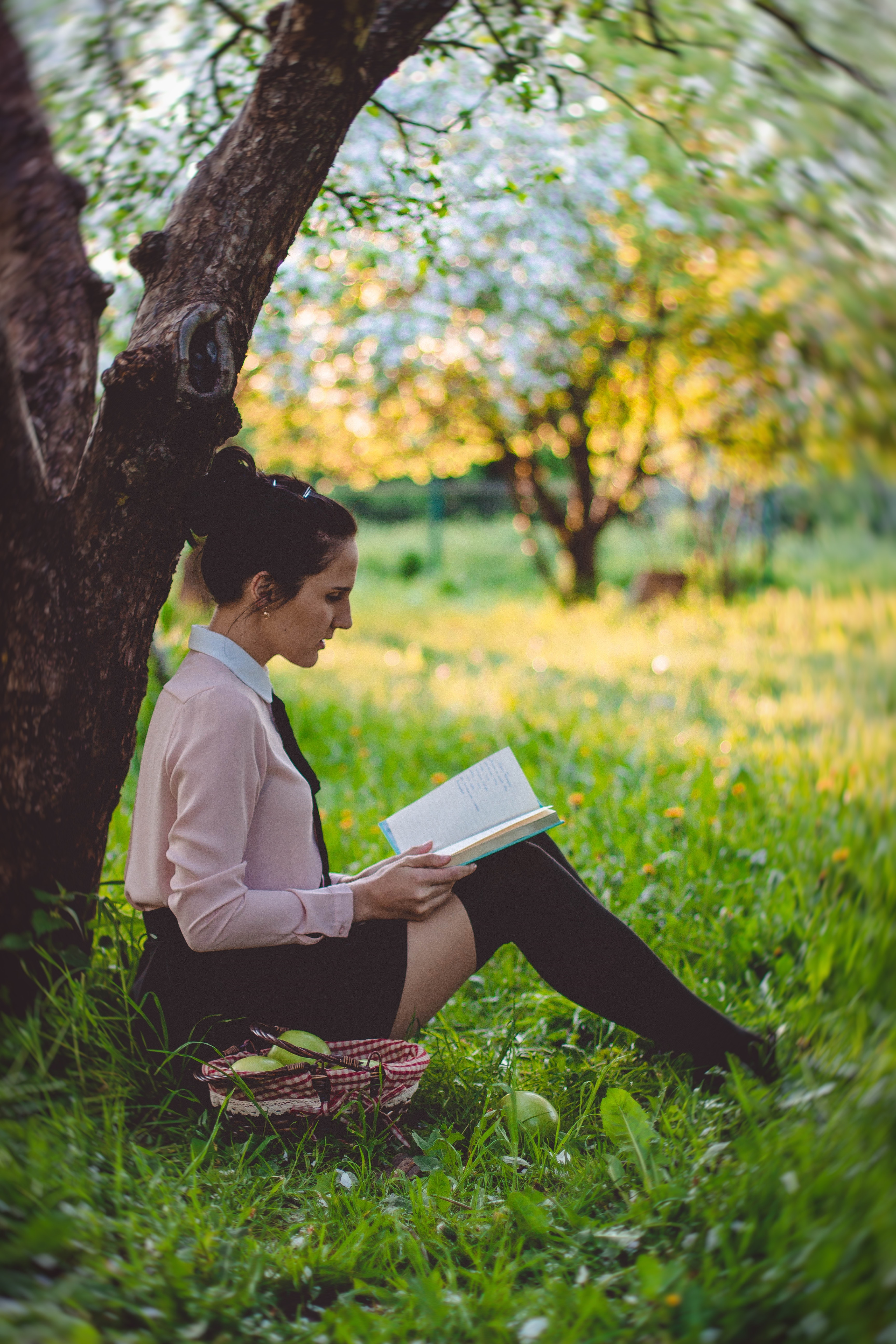 women reading a book under the tree free stock photo