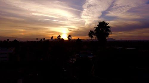 Δωρεάν στοκ φωτογραφιών με Ανατολή ηλίου, δέντρα, δύση του ηλίου, ουρανός