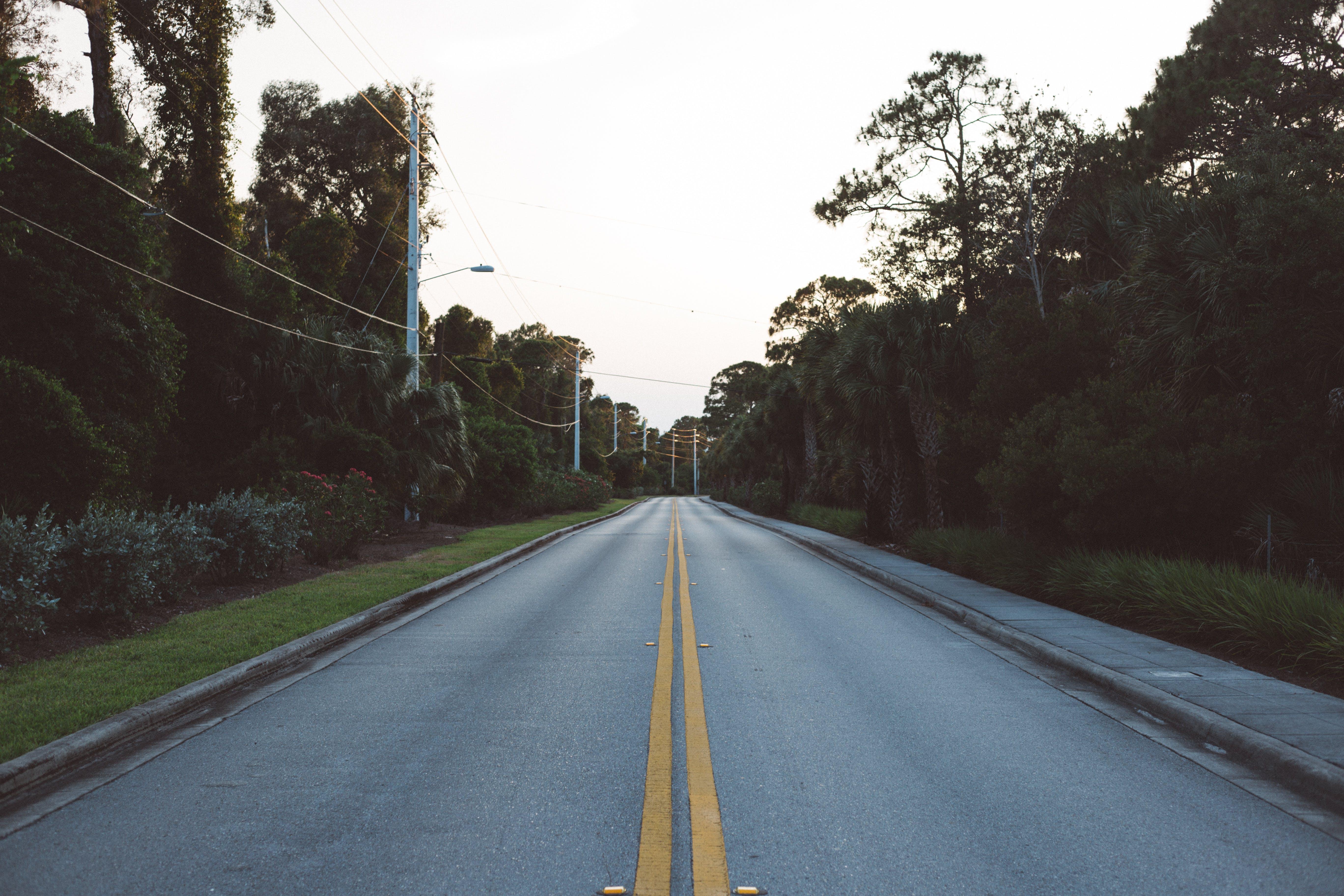 Základová fotografie zdarma na téma jízdní pruh, pouliční osvětlení, silnice, stromy