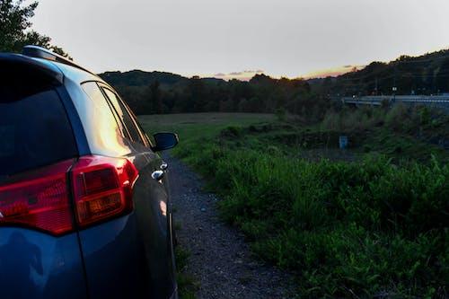 Fotos de stock gratuitas de amanecer, arboles, automotor, carretera