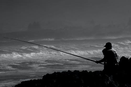 Free stock photo of fishing