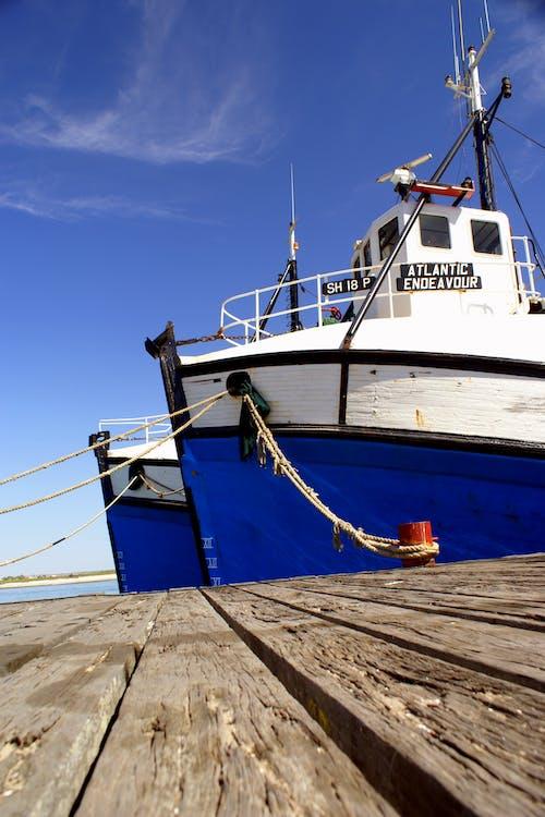 Free stock photo of fishing trawlers