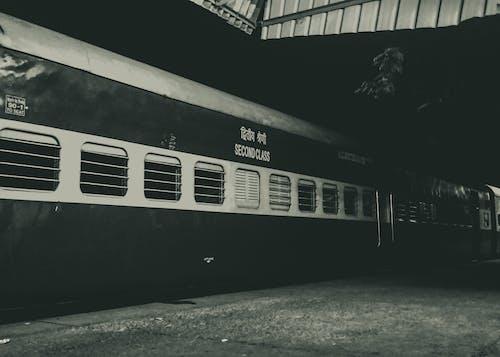 Základová fotografie zdarma na téma dopravní systém, noční fotografie, strom, trénovat