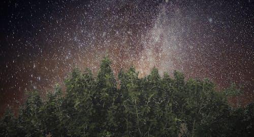 夜の写真, 夜空, 天の川の無料の写真素材