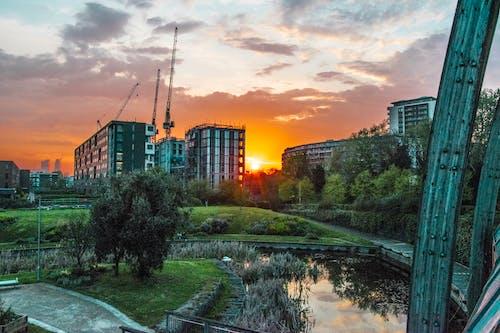 日没, 都市公園, 風景の無料の写真素材