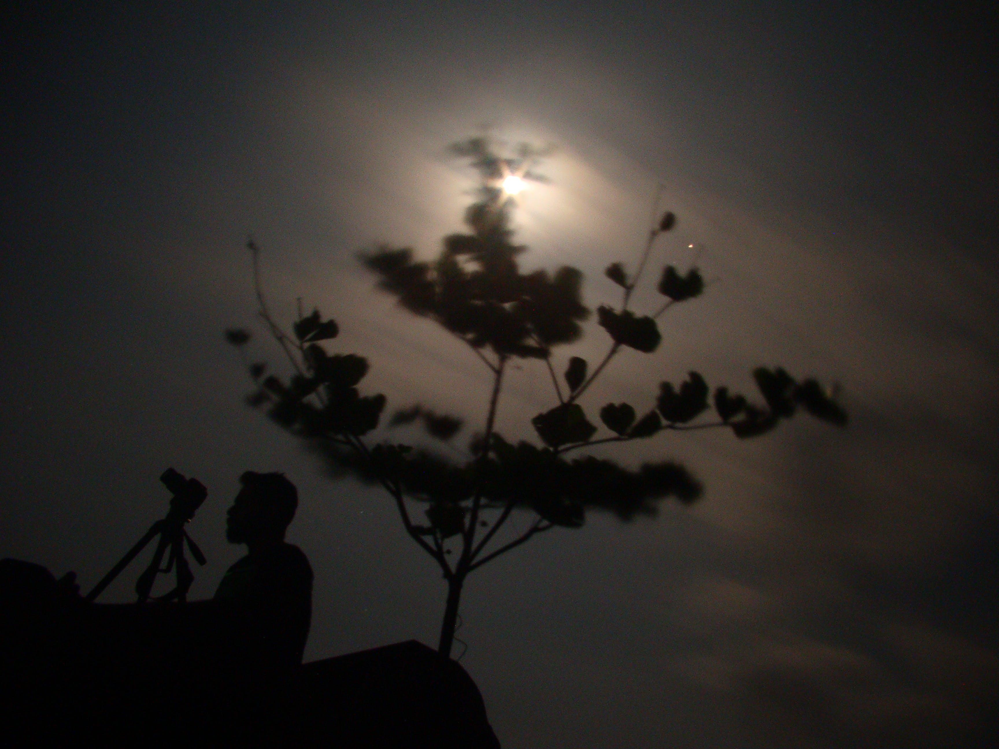 Ảnh lưu trữ miễn phí về chụp ảnh ánh trăng