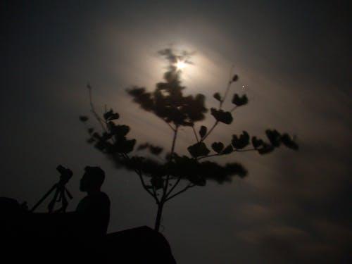 Free stock photo of moonlight photography