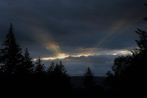 日没の無料の写真素材