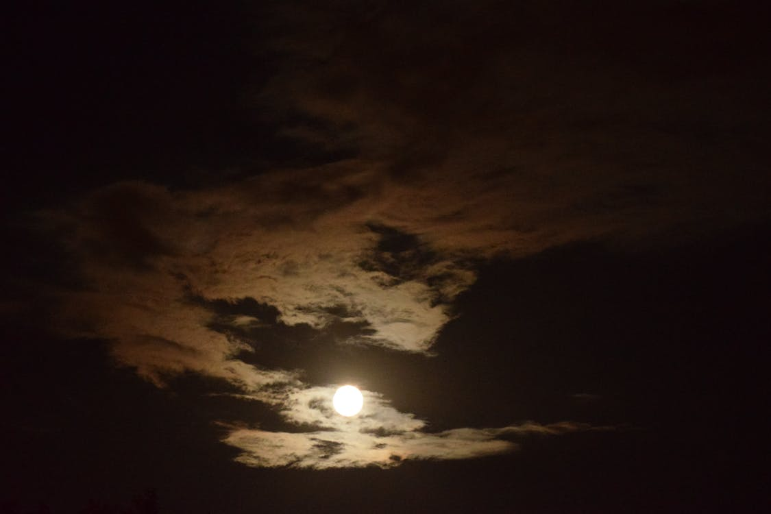 Full Moon Dragon: Free Stock Photo Of Clouds, Dragon, Full Moon