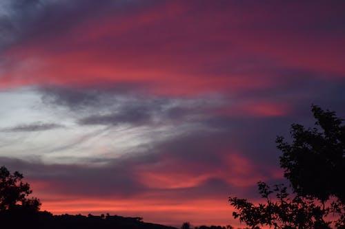 ピンクの夕日, 夕空, 赤い空の無料の写真素材