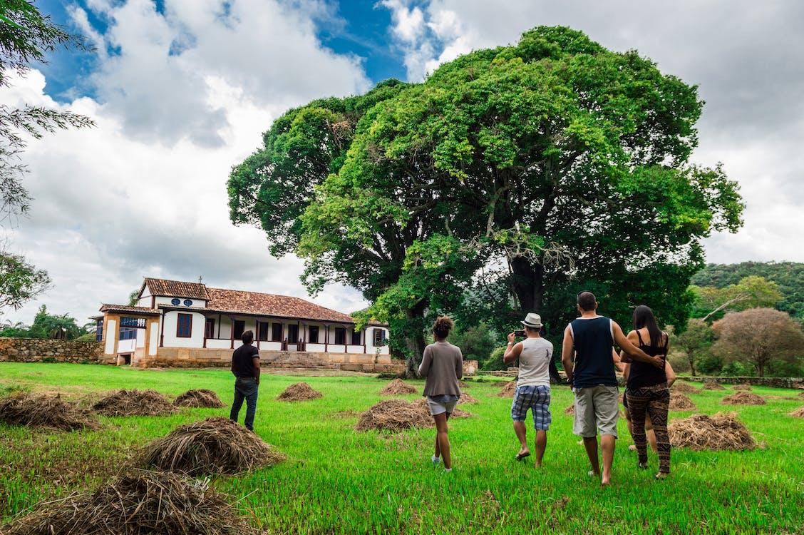 Group of People Walking Along Green Grass Field