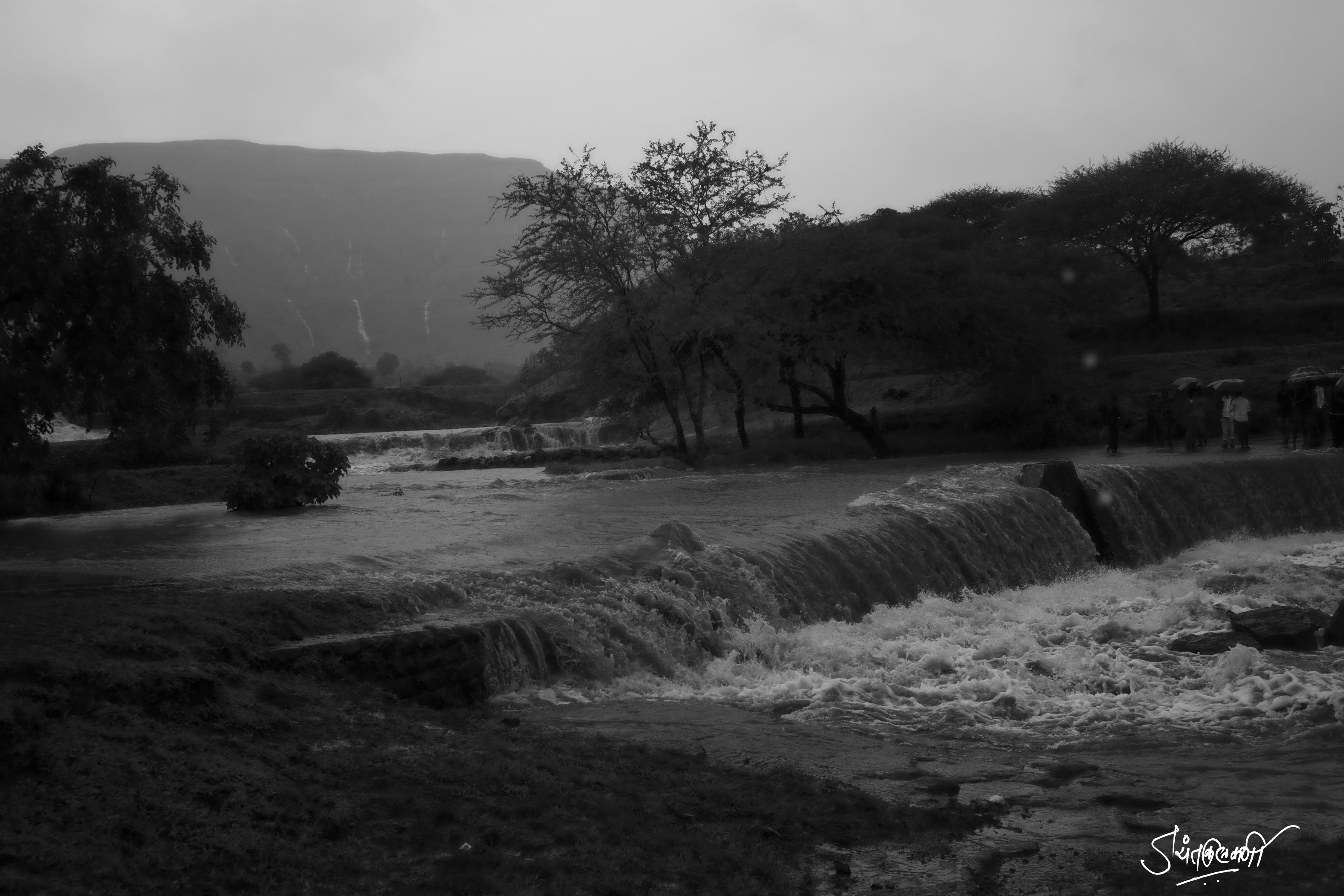 Free stock photo of black and white, landsape, running water