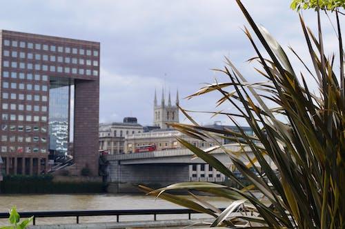 Бесплатное стоковое фото с лондон