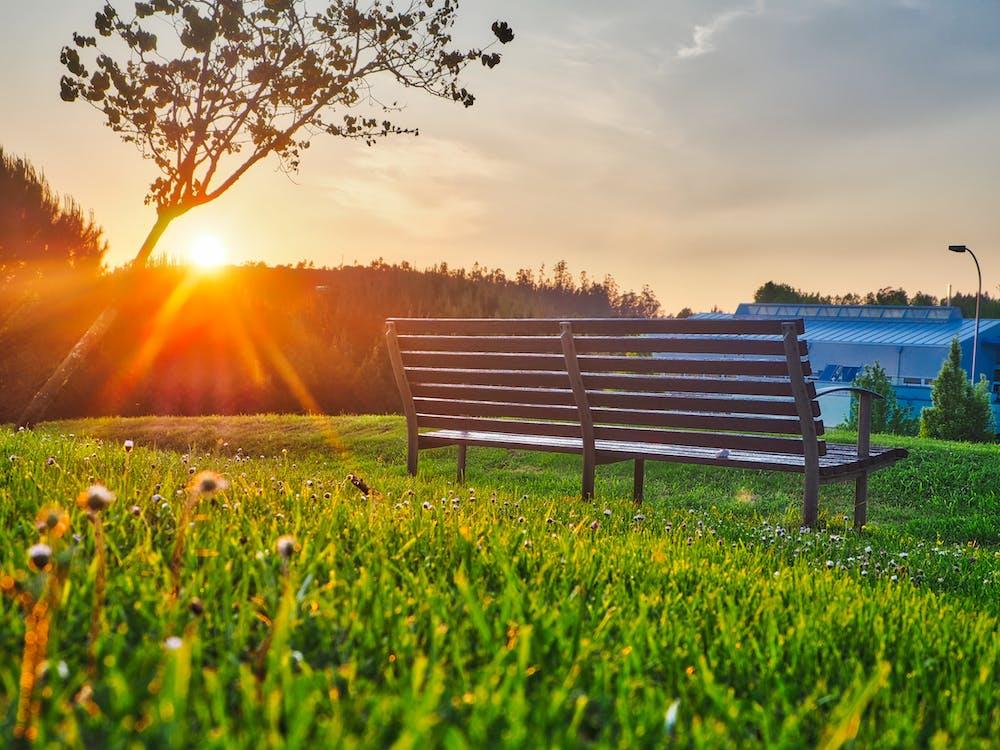 Gratis lagerfoto af bænk, græs, himmel