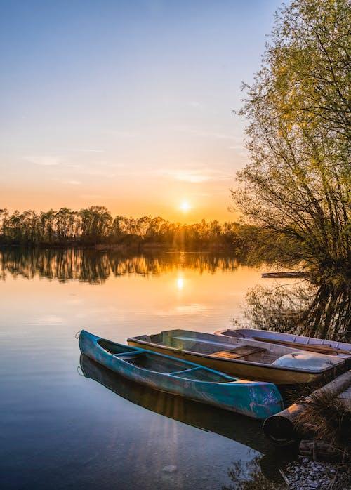 Foto d'estoc gratuïta de aigua, Aigües, arbres, barca de rems
