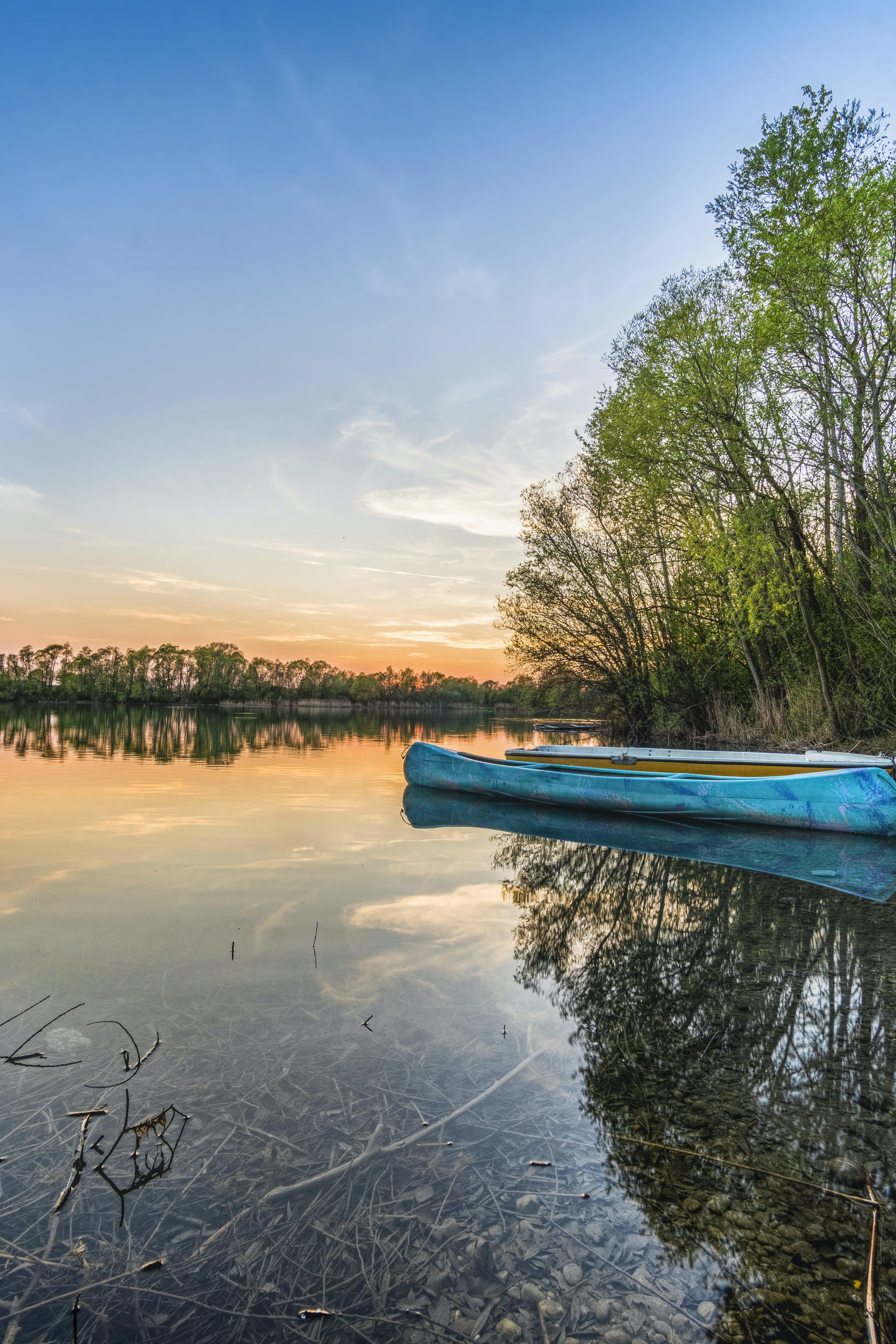 Blue Canoe on Water Beside Trees