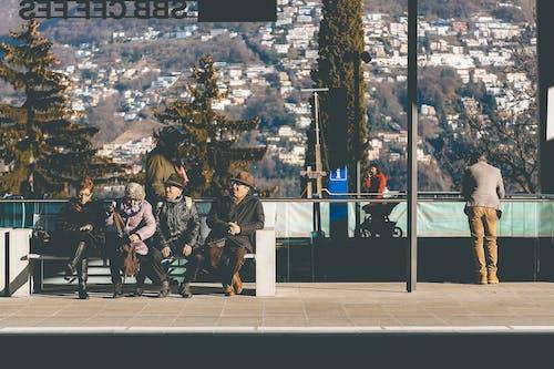 Imagine de stoc gratuită din adult, adunare, aglomerație, așezat
