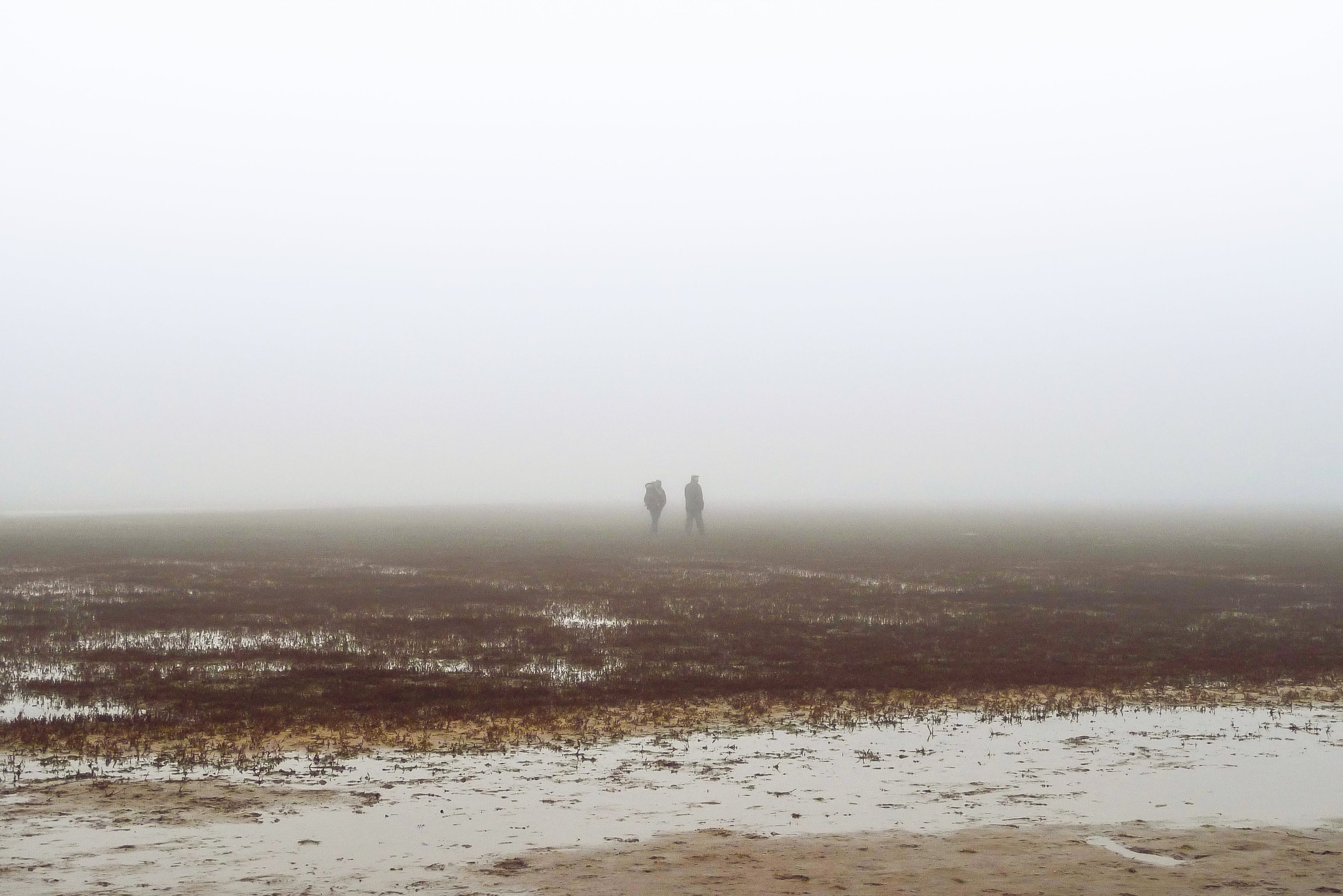 Two People Walking on Fog Covered Field