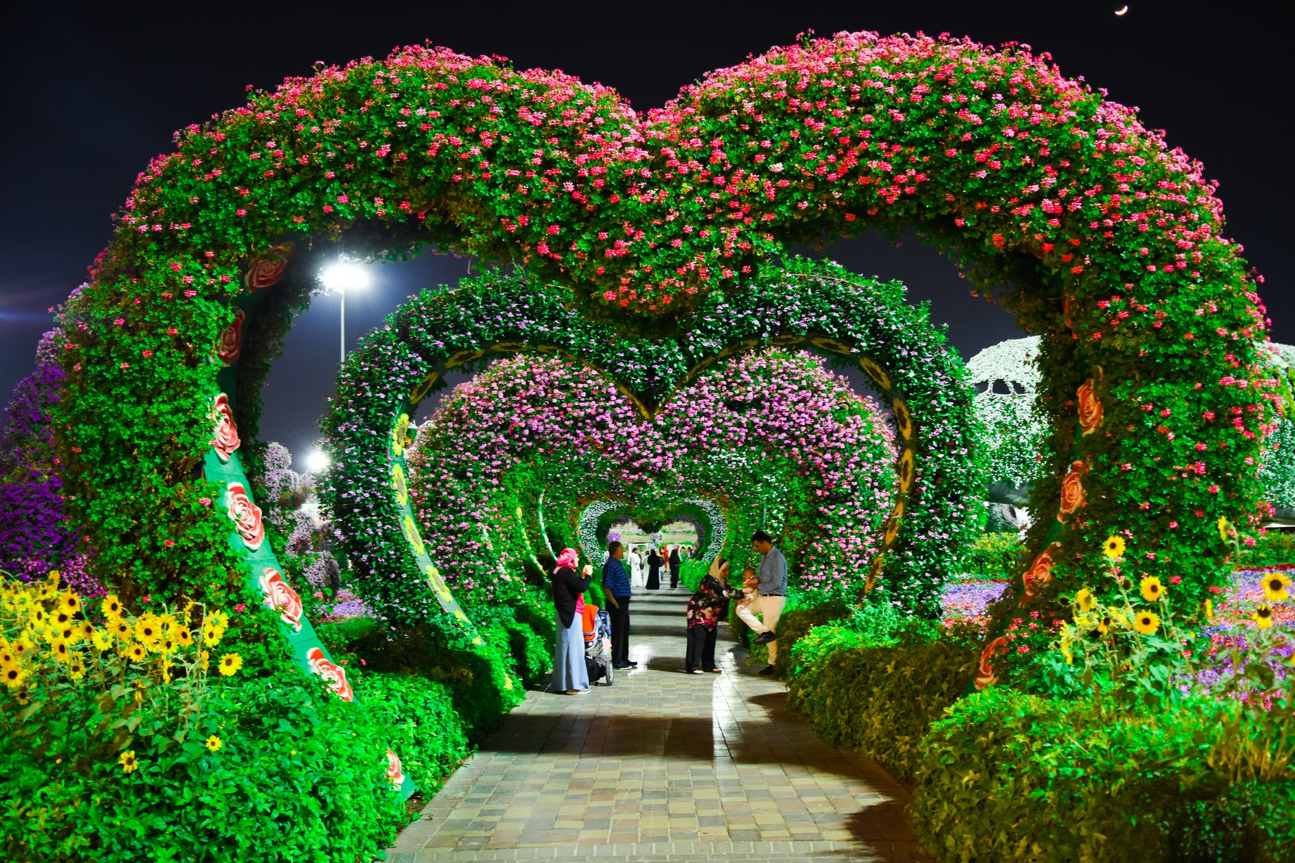 Garden with heart shape arc and full of flowers