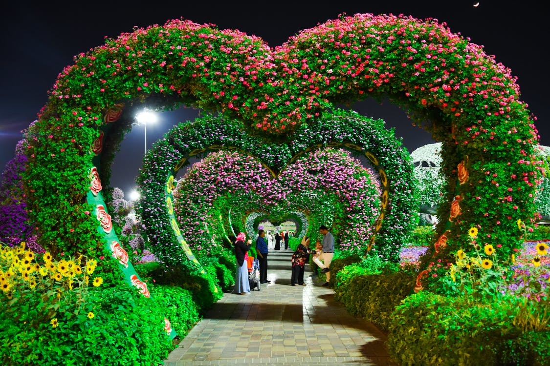 Heart-shaped Pink and Purple Flower Garden