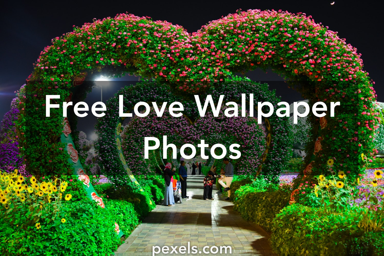 Love Wallpapers · Pexels · Free Stock Photos
