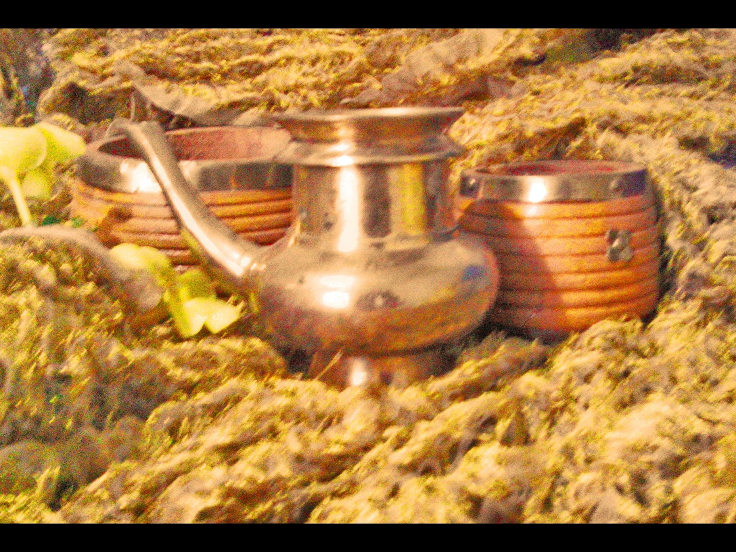 Free stock photo of archive, culture, Kerala culture