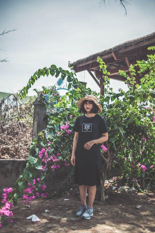 Foto d'estoc gratuïta de arbre, asiàtica, barret per al sol, bonic