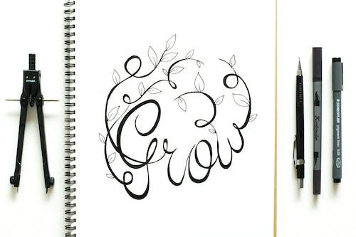 Foto profissional grátis de arte, branco, bússola, caderno de desenho