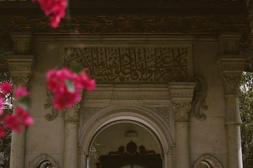 건축, 고대의, 기념물, 꽃의 무료 스톡 사진