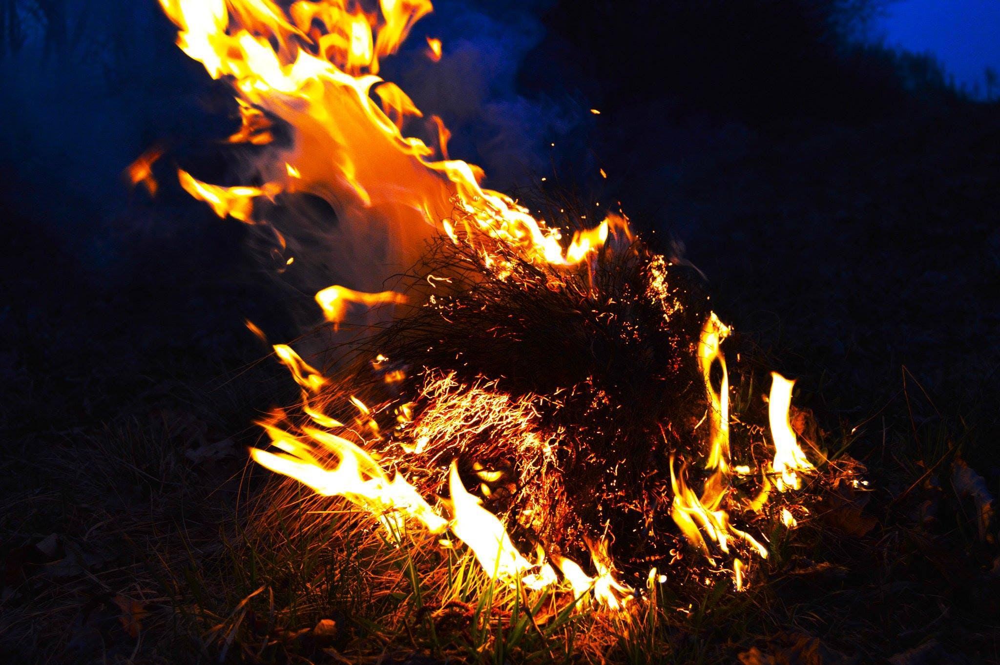 Free stock photo of bonfire, fire, flame