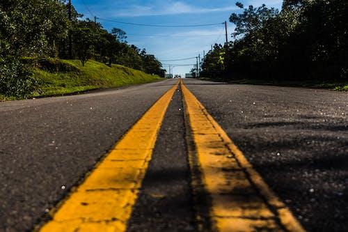거리, 경치, 고속도로, 교통의 무료 스톡 사진