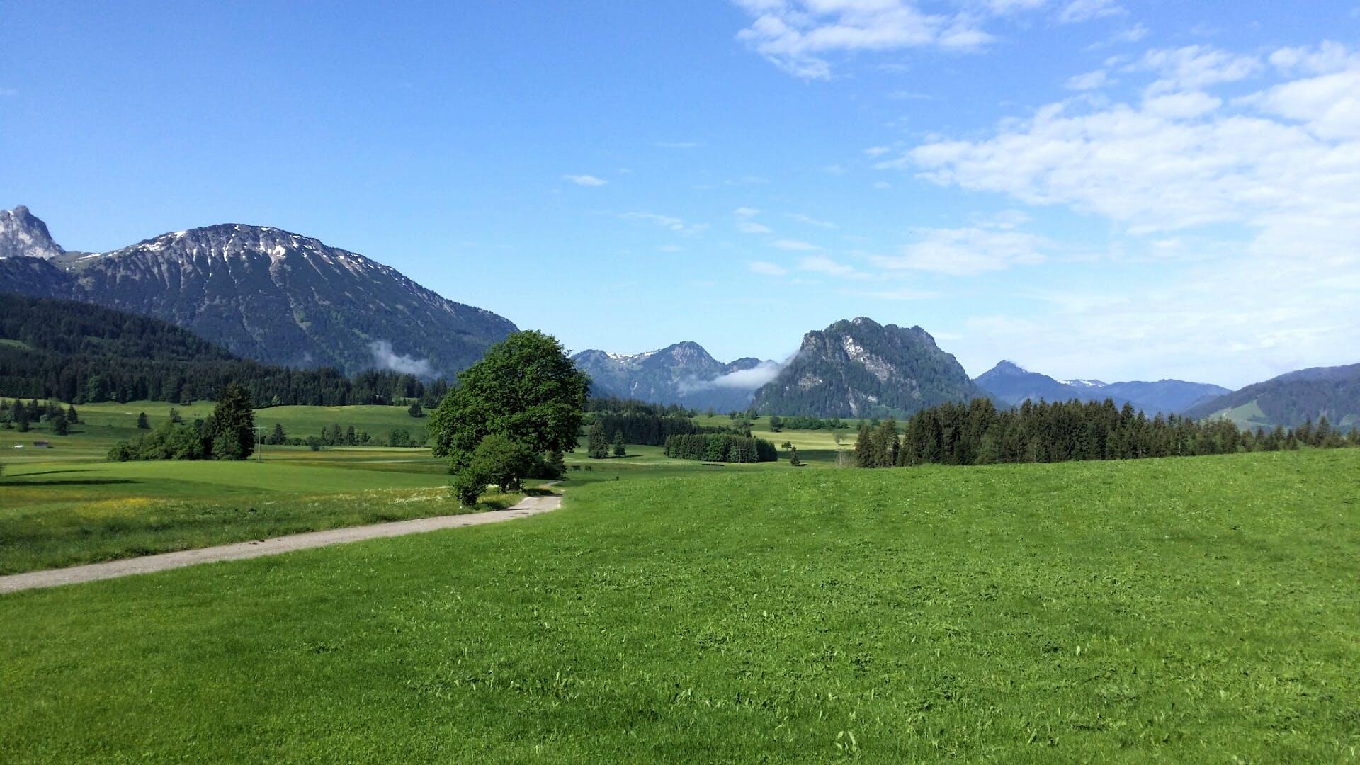 Free stock photo of Bavaria, Bayern, füssen, germany