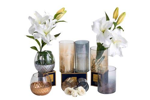 Fotobanka sbezplatnými fotkami na tému decor váza, domáci dekor, luxusný, váza na kvety